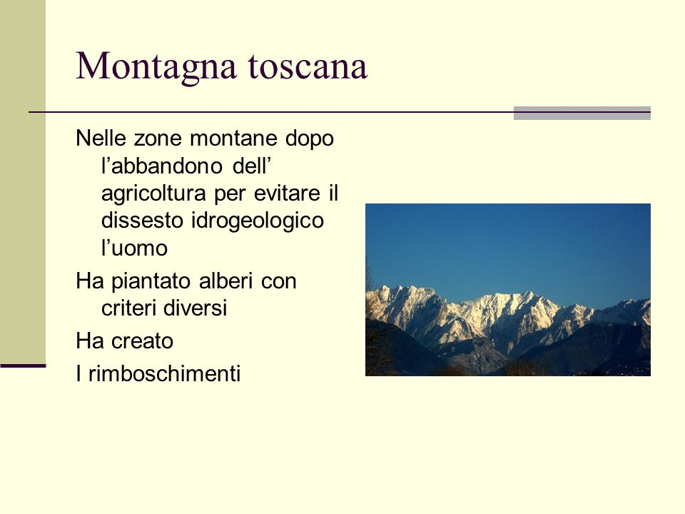 Montagna toscana Nelle zone montane dopo l'abbandono dell' agricoltura per evitare il dissesto idrogeologico l'uomo.