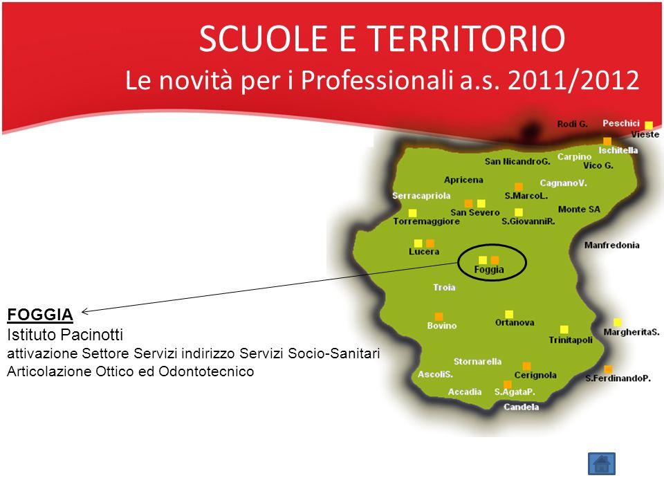 SCUOLE E TERRITORIO Le novità per i Professionali a.s. 2011/2012
