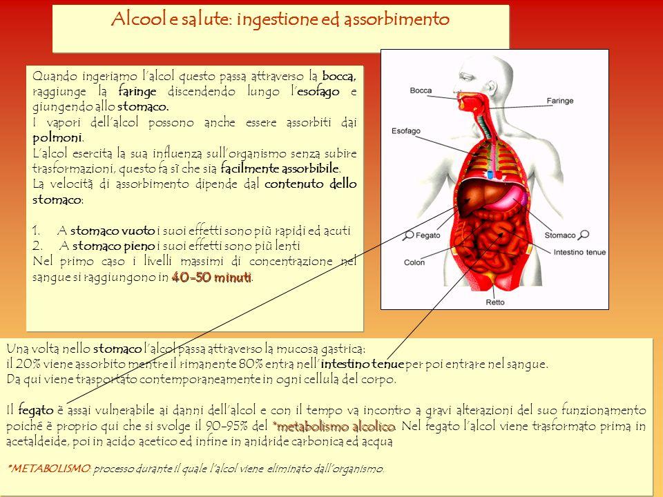 Alcool e salute: ingestione ed assorbimento