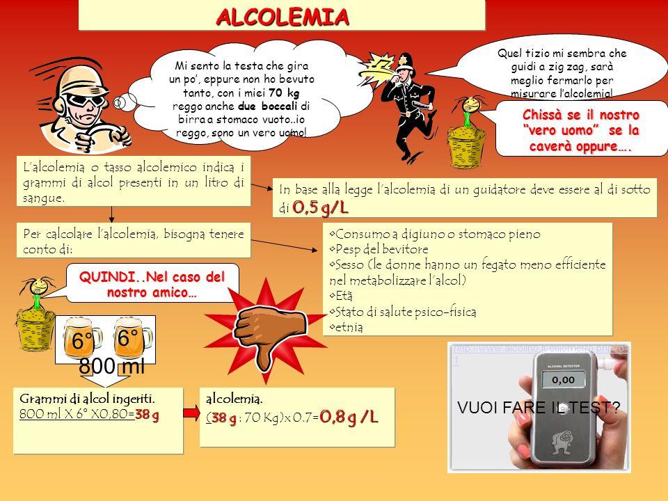ALCOLEMIA 6° 6° 800 ml VUOI FARE IL TEST