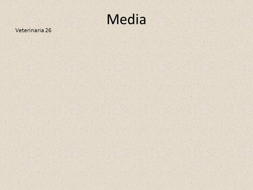Media Veterinaria 26