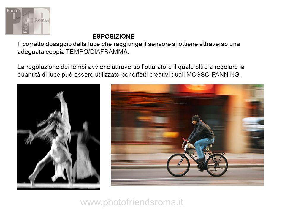 www.photofriendsroma.it ESPOSIZIONE
