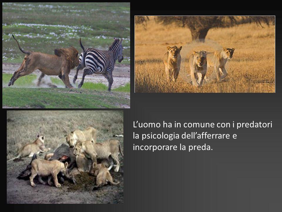 L'uomo ha in comune con i predatori la psicologia dell'afferrare e incorporare la preda.