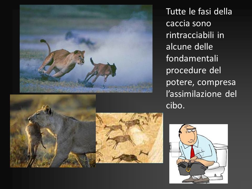 Tutte le fasi della caccia sono rintracciabili in alcune delle fondamentali procedure del potere, compresa l'assimilazione del cibo.