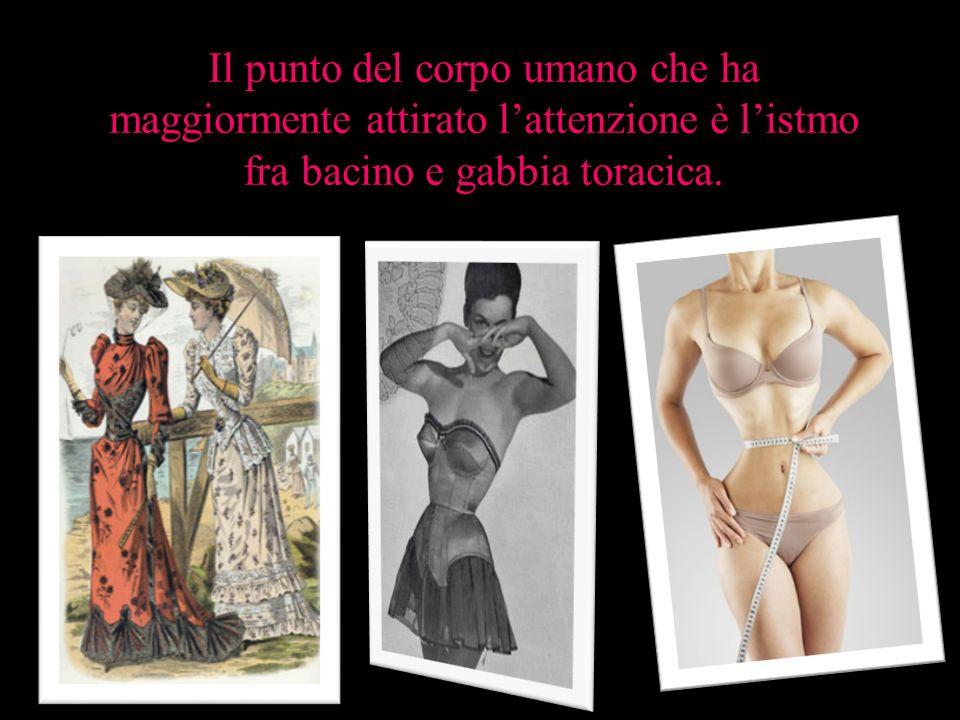 Il punto del corpo umano che ha maggiormente attirato l'attenzione è l'istmo fra bacino e gabbia toracica.