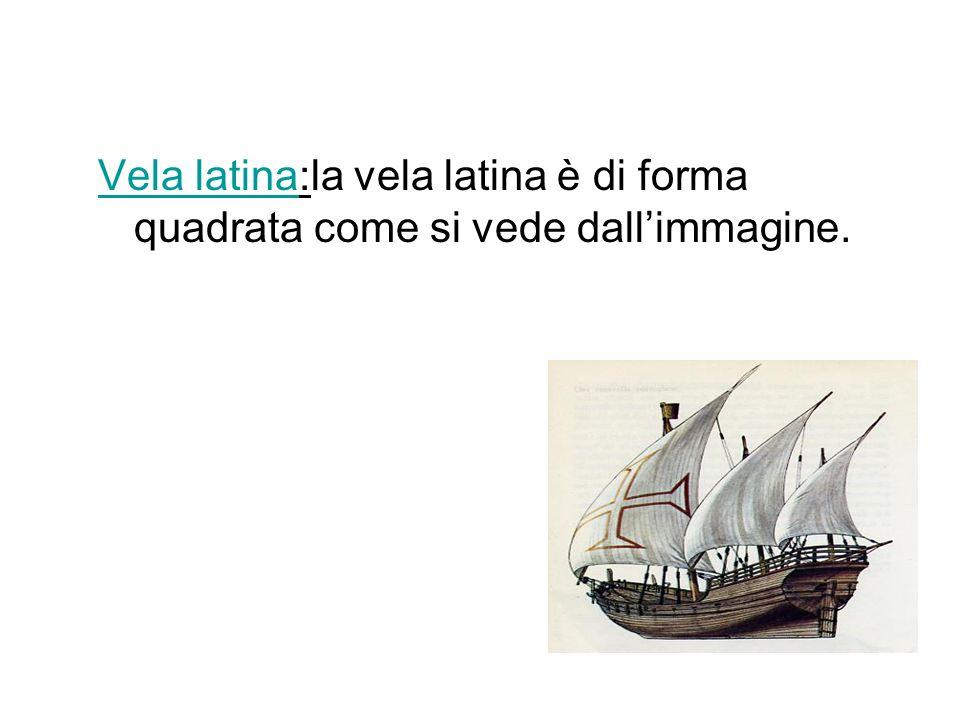 Vela latina:la vela latina è di forma quadrata come si vede dall'immagine.