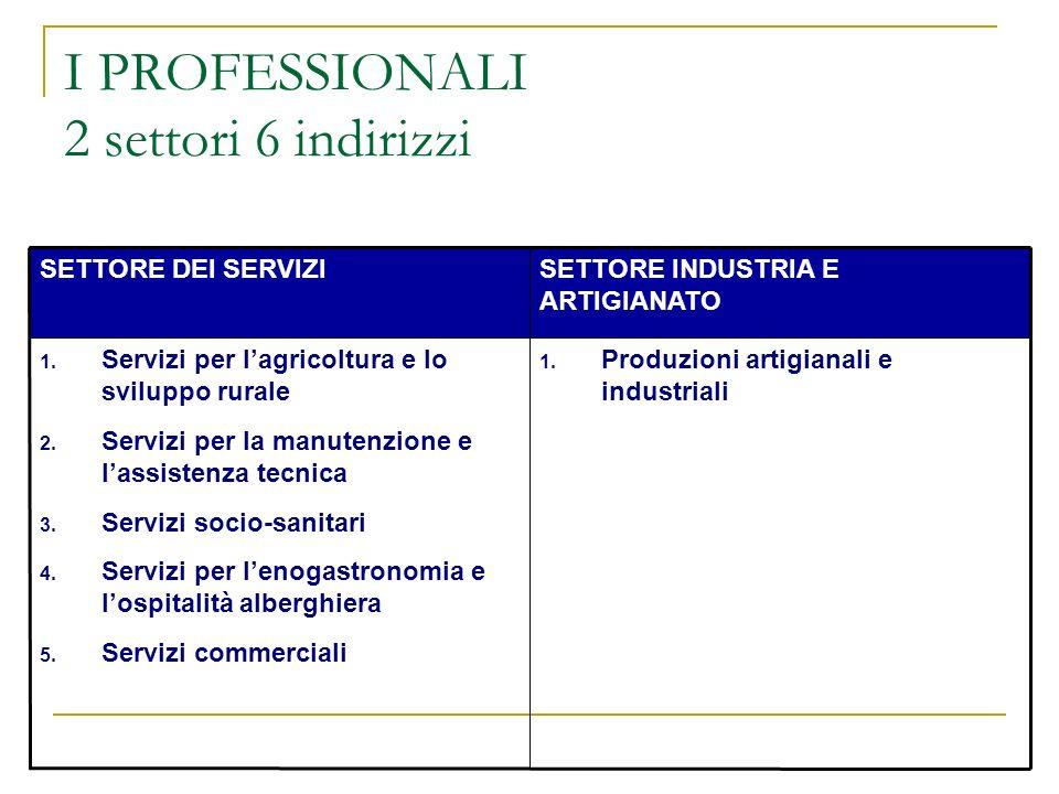 I PROFESSIONALI 2 settori 6 indirizzi
