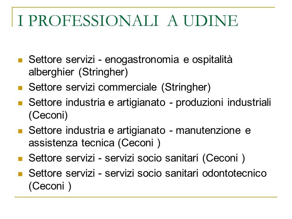 I PROFESSIONALI A UDINE