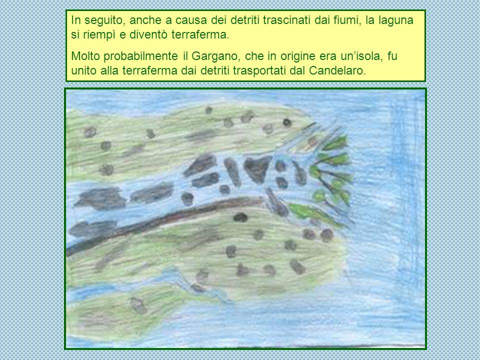 In seguito, anche a causa dei detriti trascinati dai fiumi, la laguna si riempì e diventò terraferma.