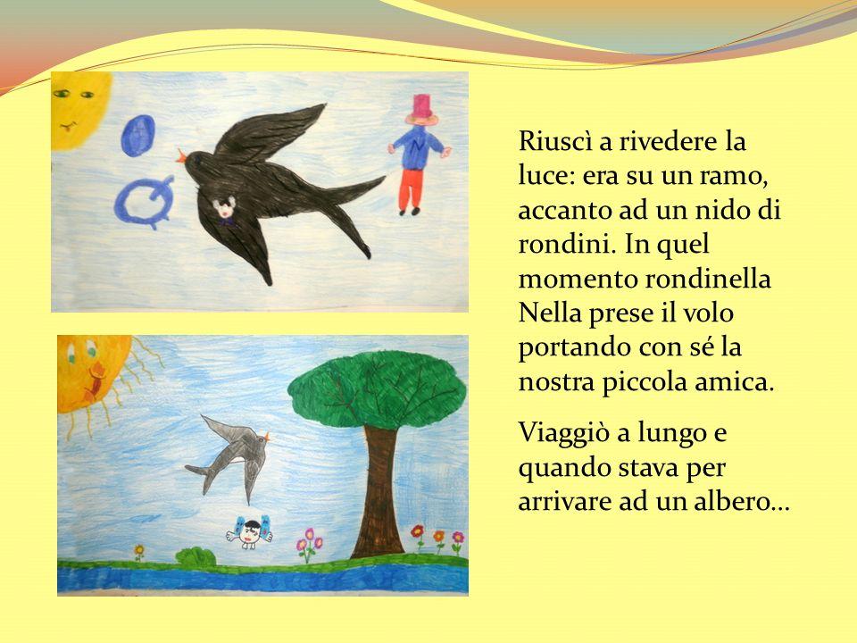 Riuscì a rivedere la luce: era su un ramo, accanto ad un nido di rondini. In quel momento rondinella Nella prese il volo portando con sé la nostra piccola amica.