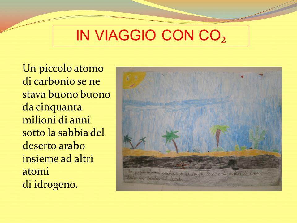 IN VIAGGIO CON CO₂