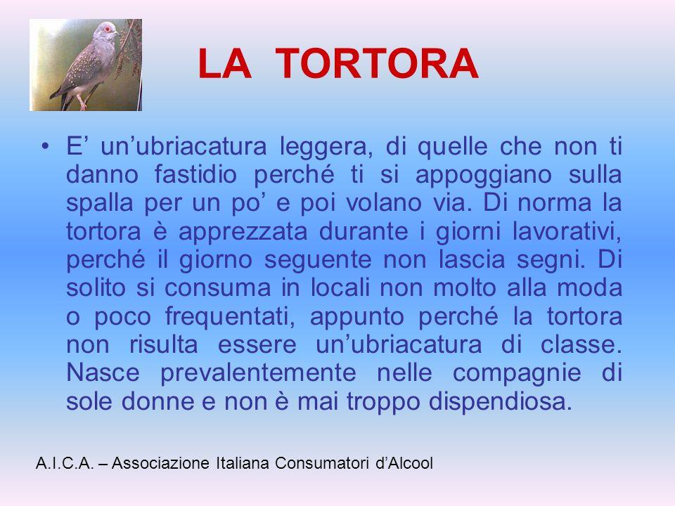 LA TORTORA