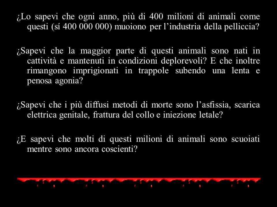 ¿Lo sapevi che ogni anno, più di 400 milioni di animali come questi (sí 400 000 000) muoiono per l'industria della pelliccia
