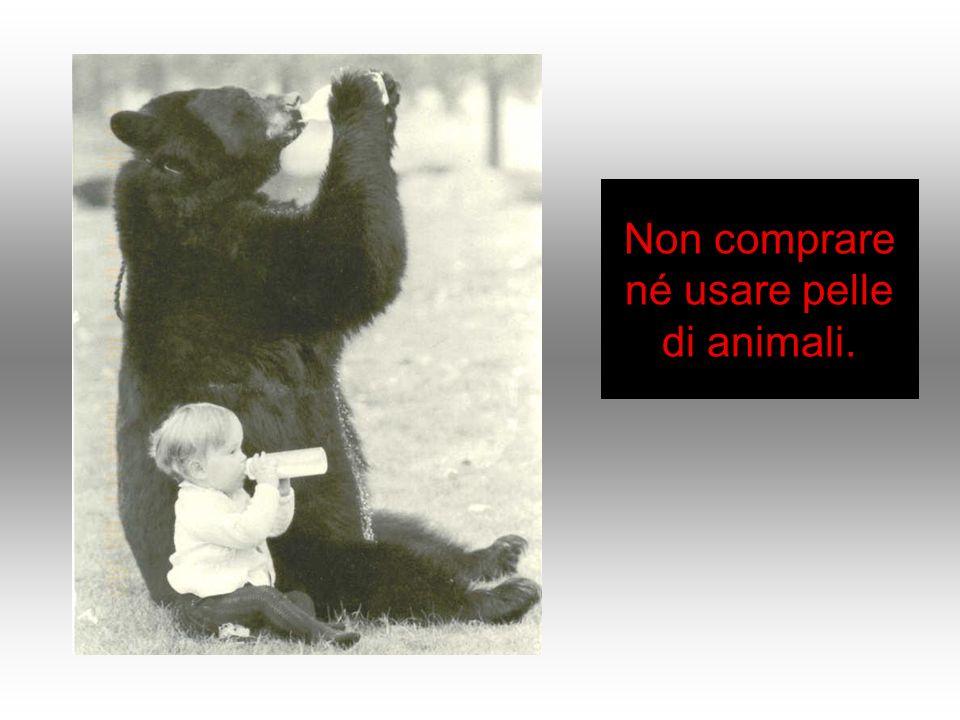 Non comprare né usare pelle di animali.