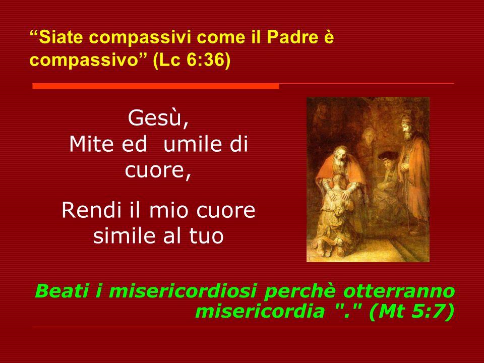 Siate compassivi come il Padre è compassivo (Lc 6:36)