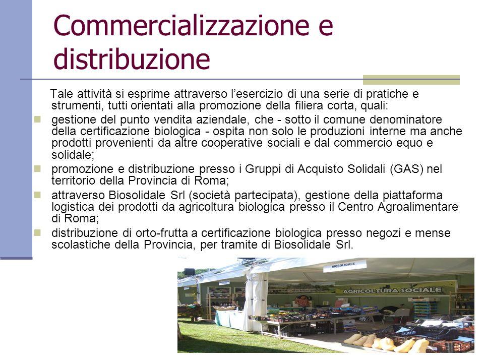 Commercializzazione e distribuzione