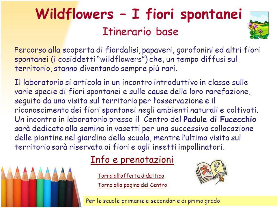 Wildflowers – I fiori spontanei Itinerario base