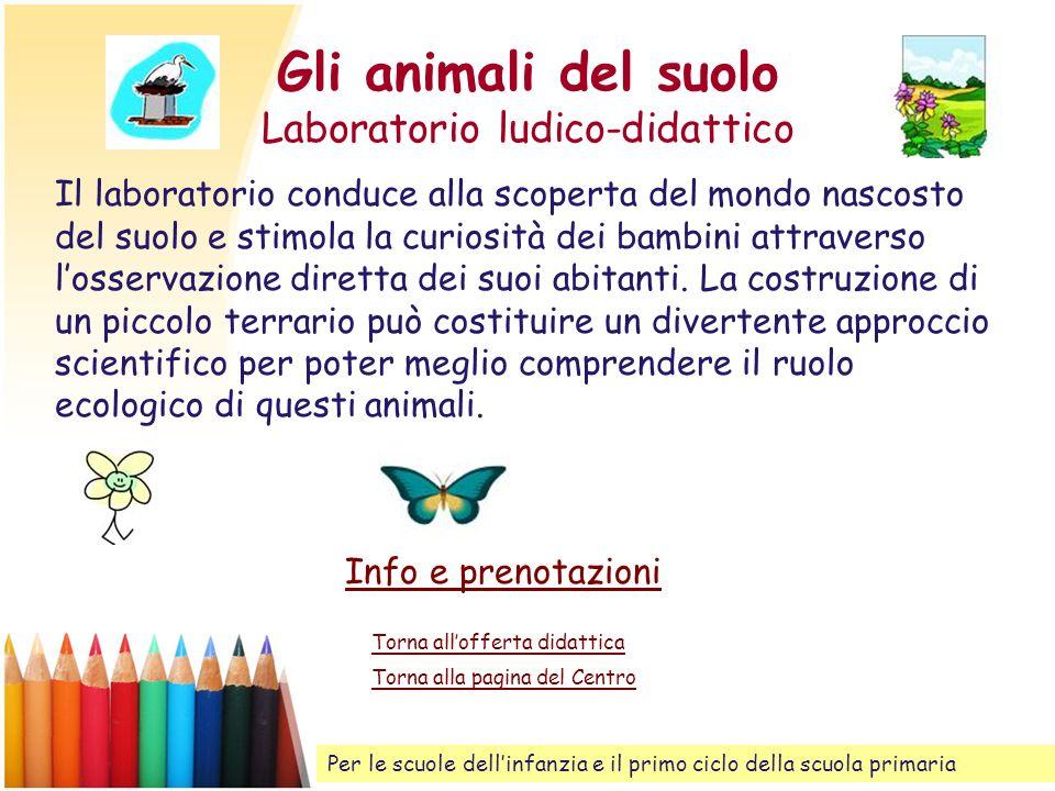 Gli animali del suolo Laboratorio ludico-didattico