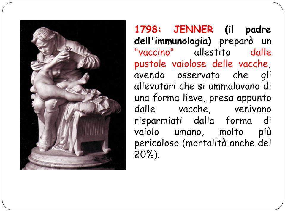 1798: JENNER (il padre dell immunologia) preparò un vaccino allestito dalle pustole vaiolose delle vacche, avendo osservato che gli allevatori che si ammalavano di una forma lieve, presa appunto dalle vacche, venivano risparmiati dalla forma di vaiolo umano, molto più pericoloso (mortalità anche del 20%).