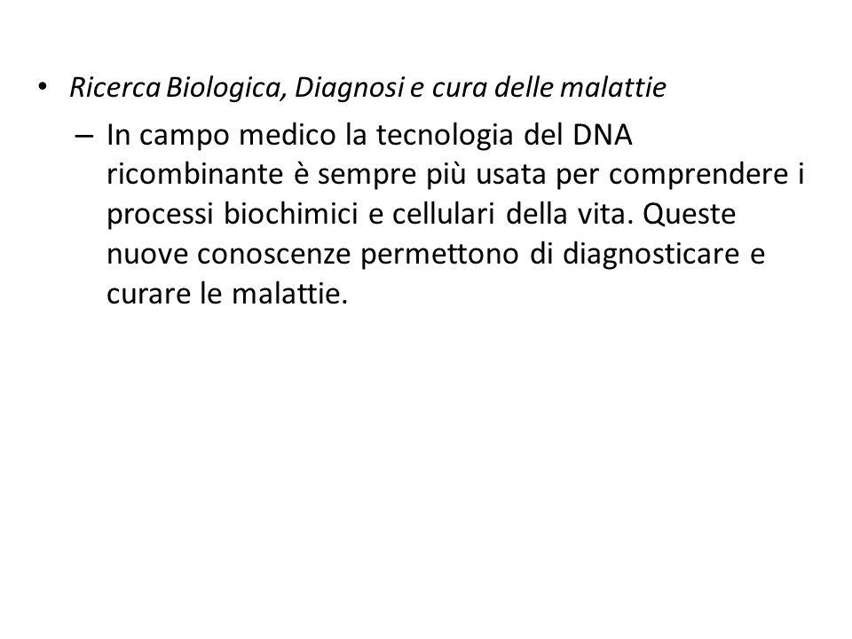 Ricerca Biologica, Diagnosi e cura delle malattie