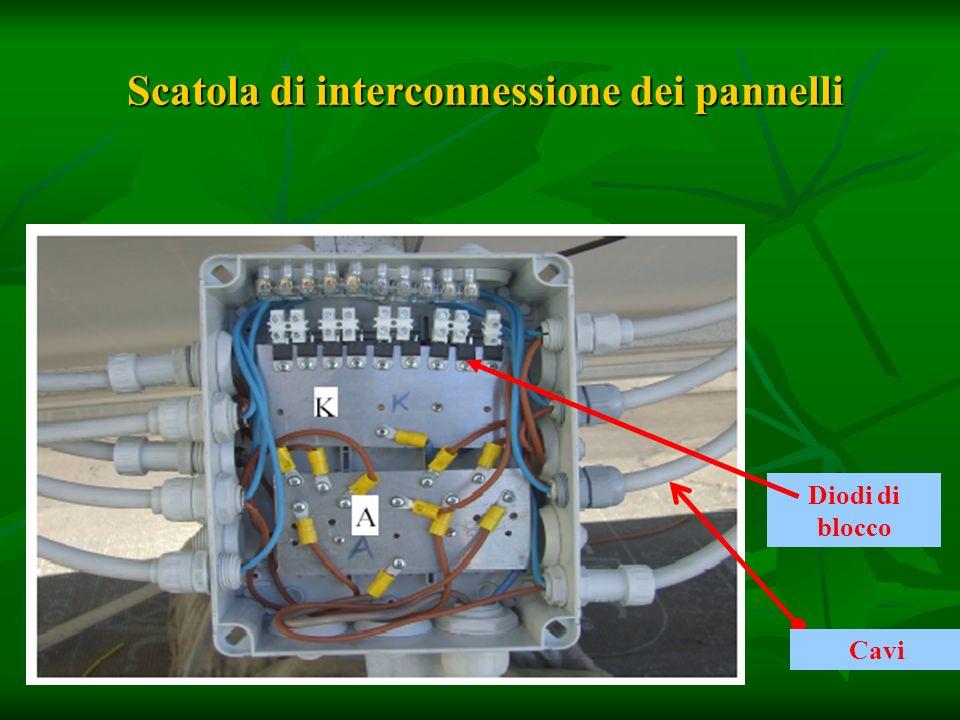 Scatola di interconnessione dei pannelli