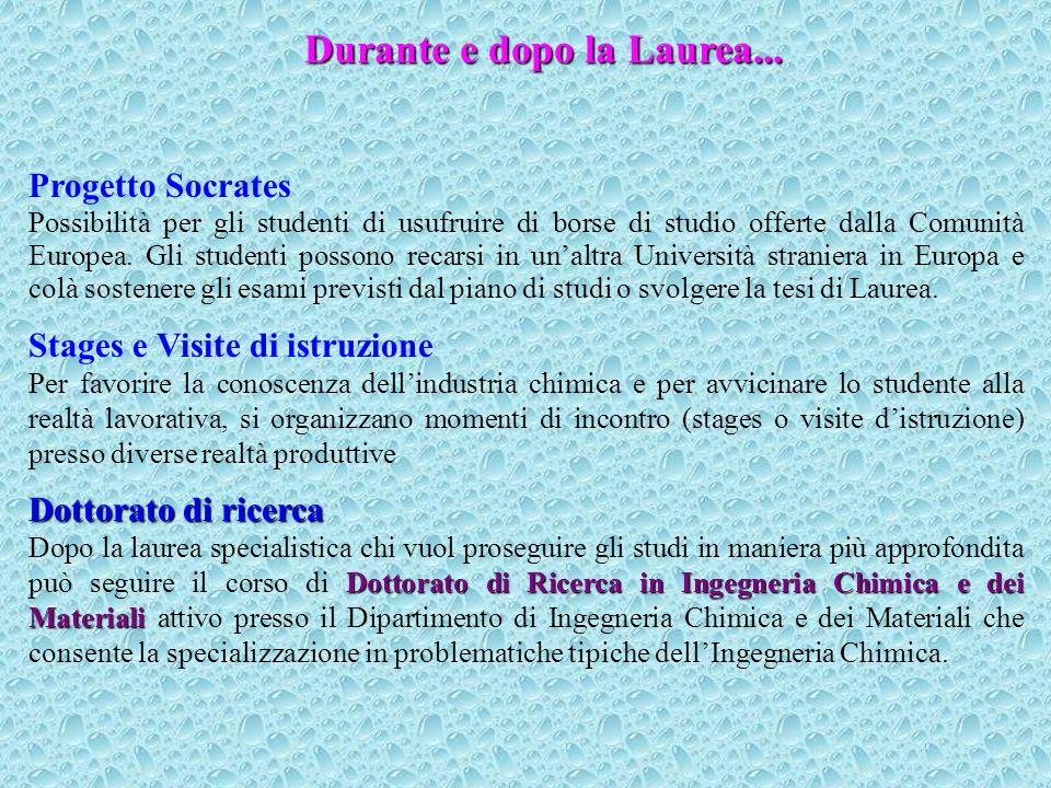 Durante e dopo la Laurea...