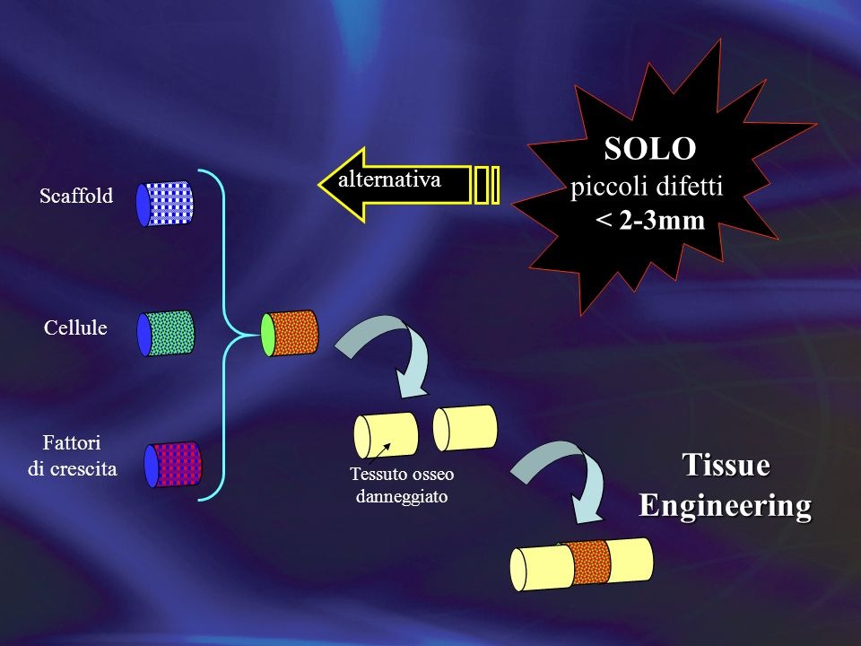SOLO Tissue Engineering