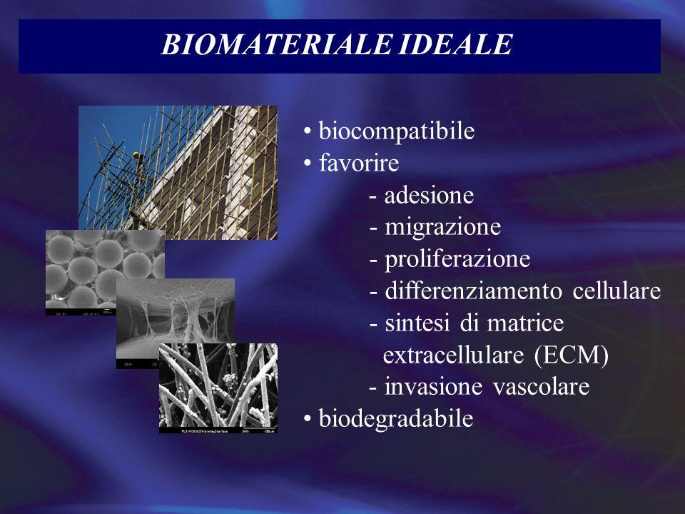 BIOMATERIALE IDEALE biocompatibile favorire - adesione - migrazione