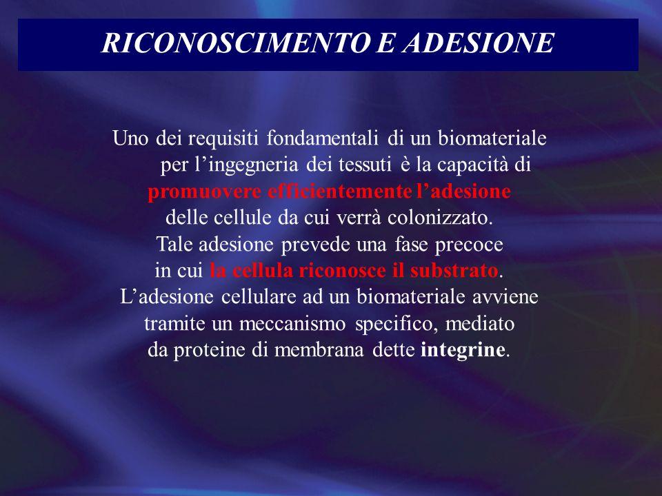 RICONOSCIMENTO E ADESIONE