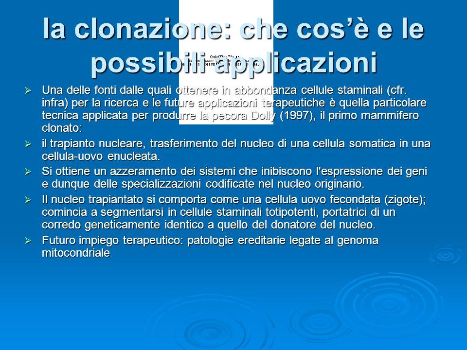 la clonazione: che cos'è e le possibili applicazioni