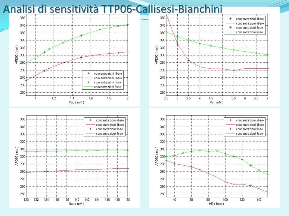 Analisi di sensitività TTP06-Callisesi-Bianchini