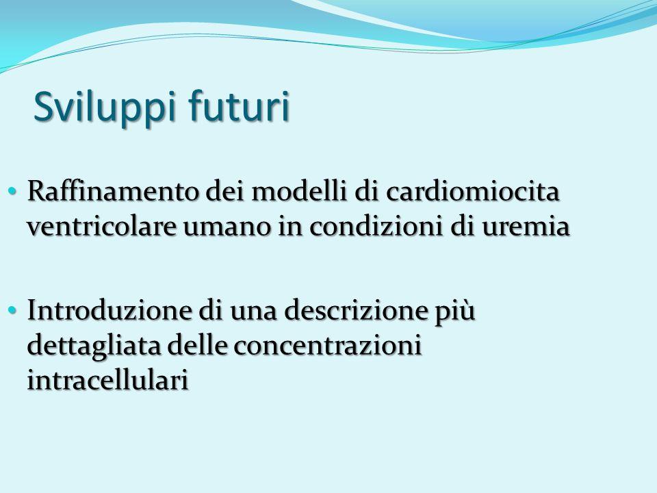 Sviluppi futuri Raffinamento dei modelli di cardiomiocita ventricolare umano in condizioni di uremia.