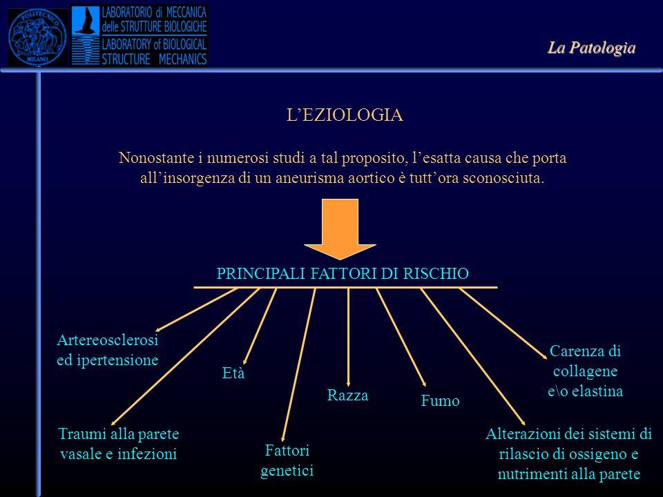 L'EZIOLOGIA La Patologia