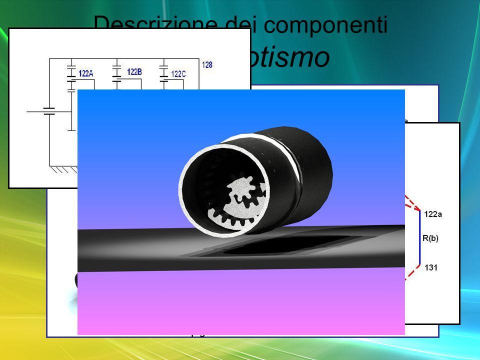 Descrizione dei componenti primo rotismo