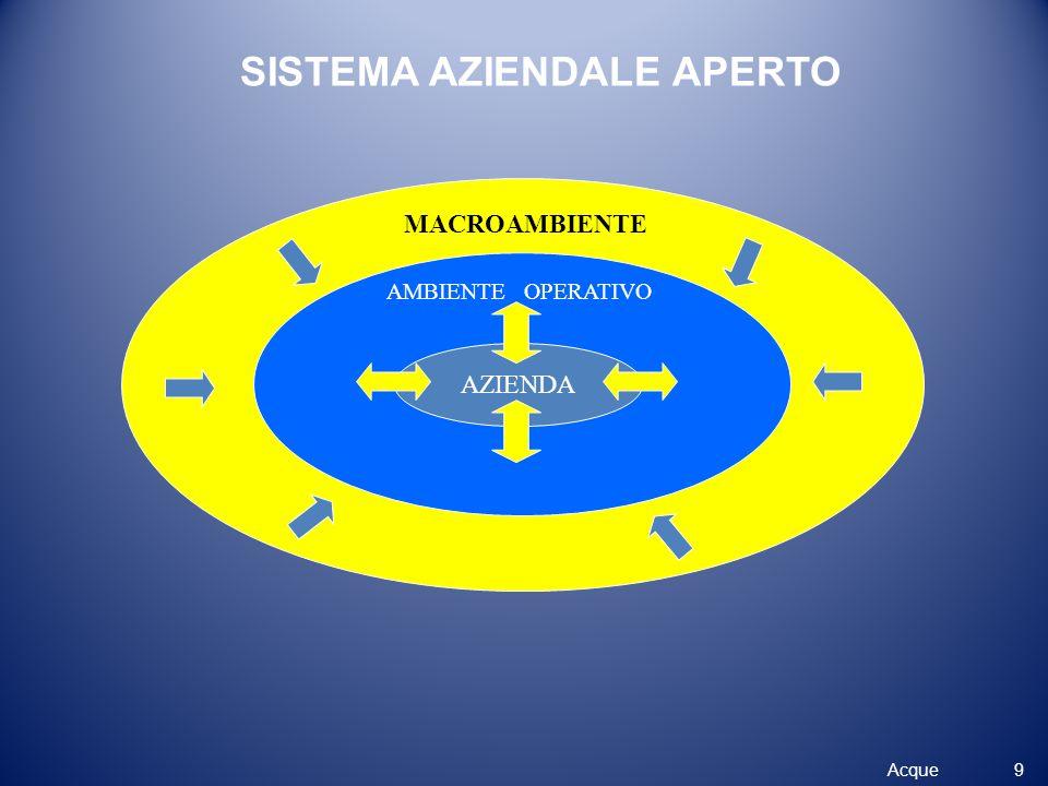 SISTEMA AZIENDALE APERTO