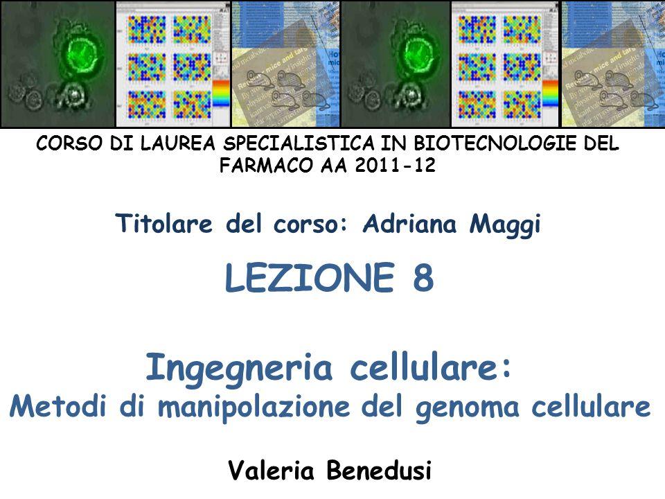 LEZIONE 8 Ingegneria cellulare: