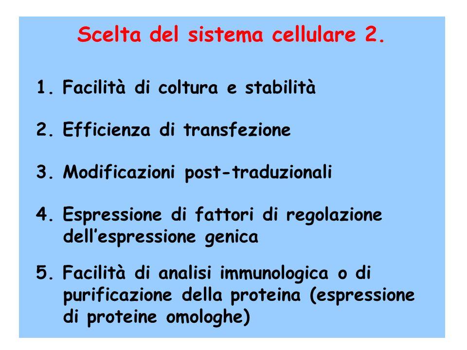 Scelta del sistema cellulare 2.