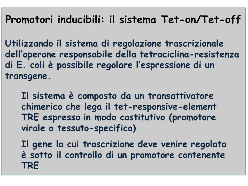 Promotori inducibili: il sistema Tet-on/Tet-off