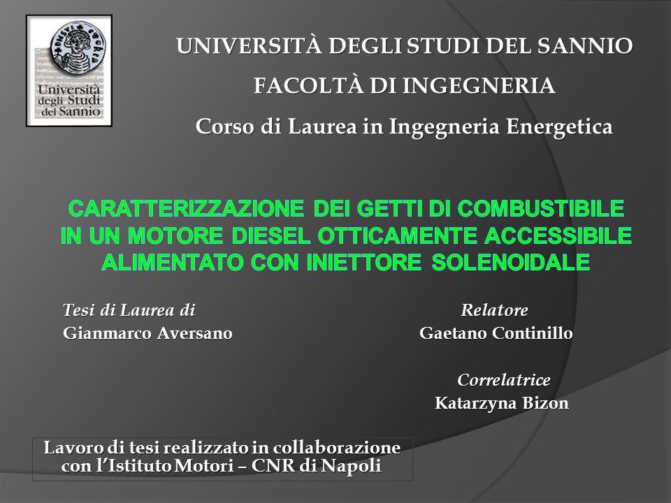 UNIVERSITÀ DEGLI STUDI DEL SANNIO FACOLTÀ DI INGEGNERIA