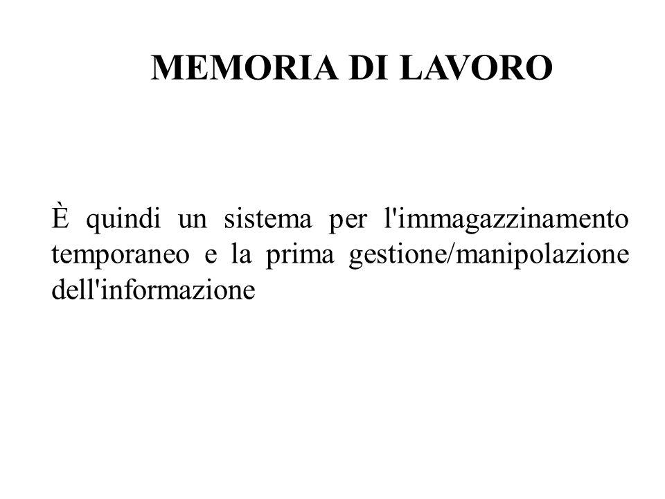 MEMORIA DI LAVORO È quindi un sistema per l immagazzinamento temporaneo e la prima gestione/manipolazione dell informazione.