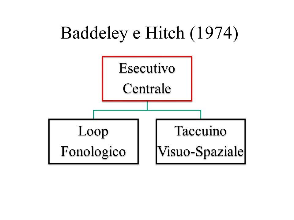 Baddeley e Hitch (1974) Esecutivo Centrale Loop Fonologico Taccuino
