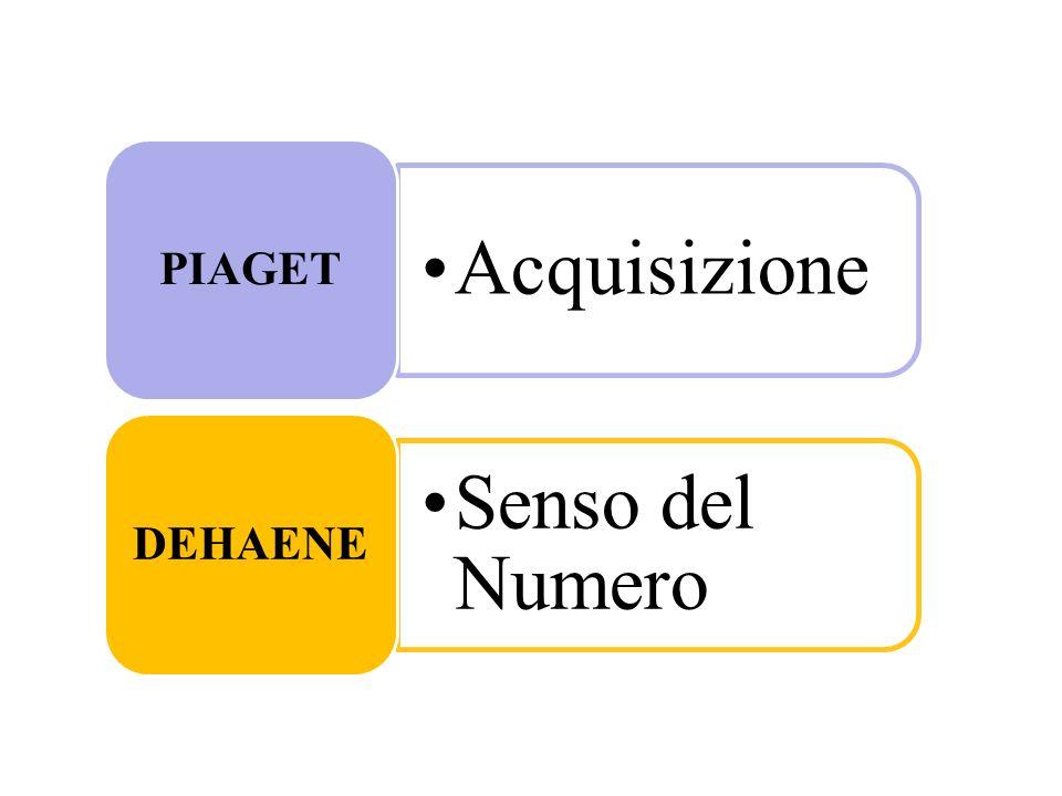 Acquisizione PIAGET Senso del Numero DEHAENE