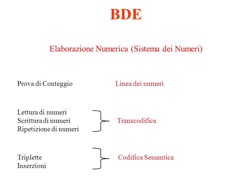 Elaborazione Numerica (Sistema dei Numeri)