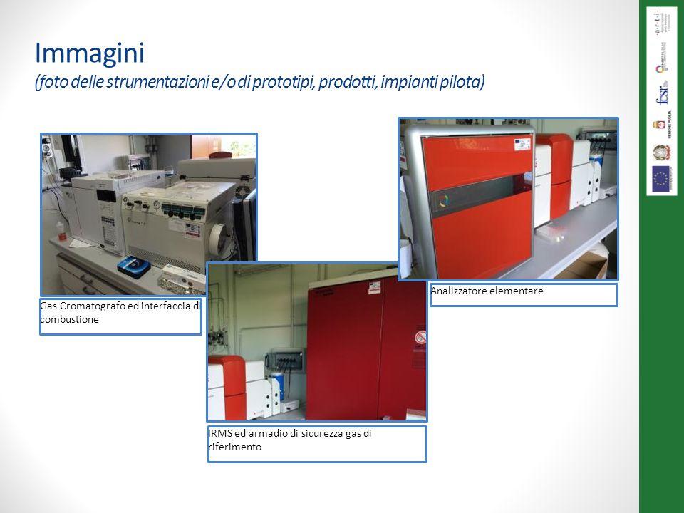 Immagini (foto delle strumentazioni e/o di prototipi, prodotti, impianti pilota)