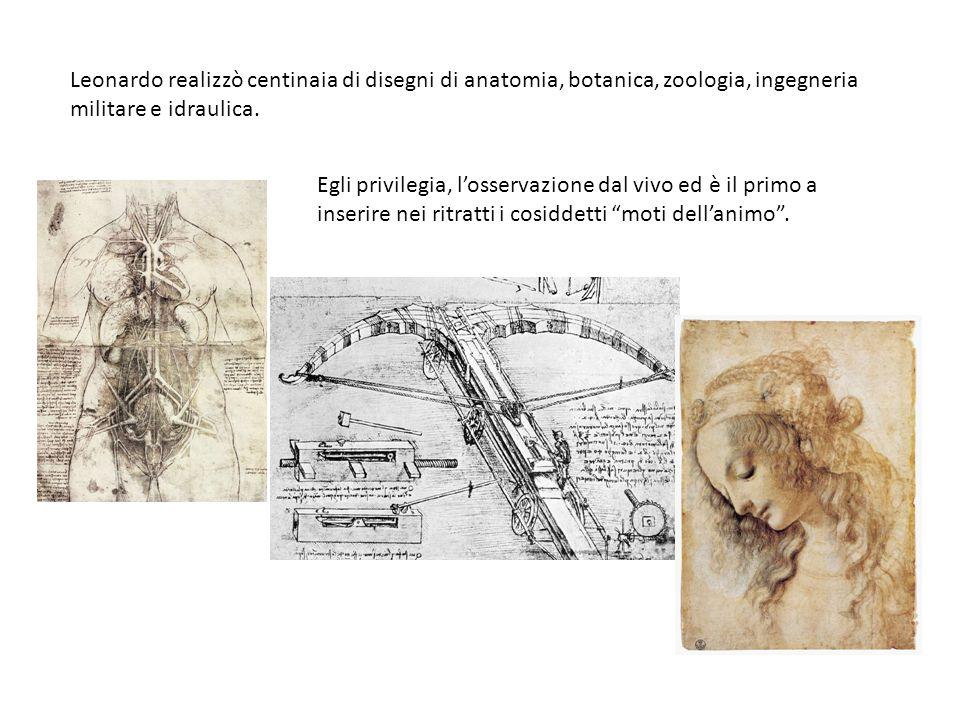 Leonardo realizzò centinaia di disegni di anatomia, botanica, zoologia, ingegneria militare e idraulica.