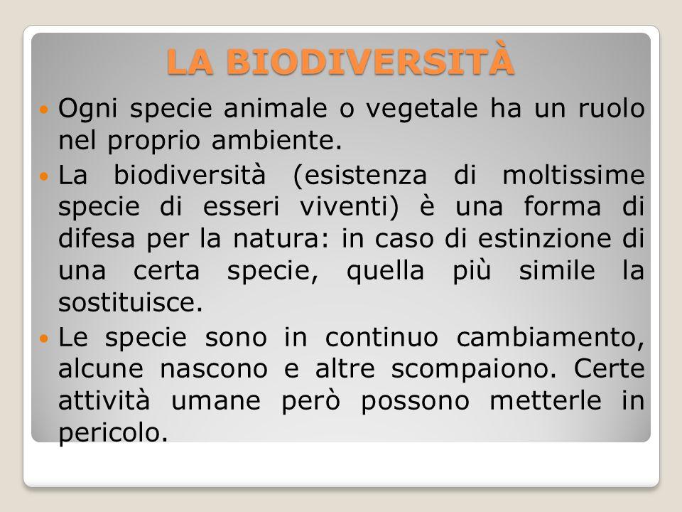 LA BIODIVERSITÀ Ogni specie animale o vegetale ha un ruolo nel proprio ambiente.