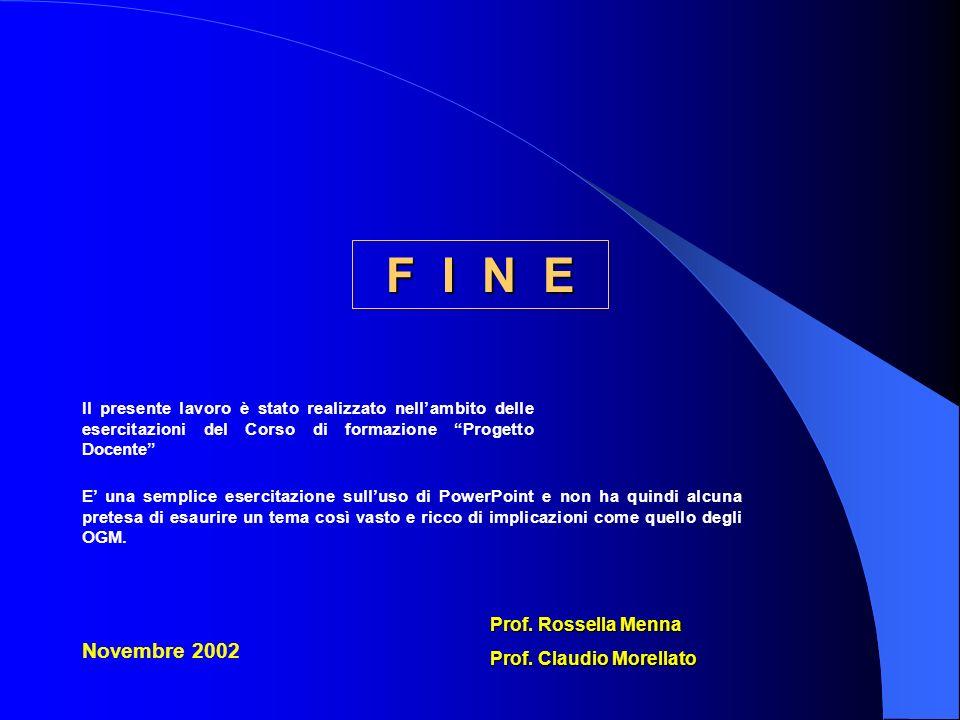 F I N E Novembre 2002 Prof. Rossella Menna Prof. Claudio Morellato