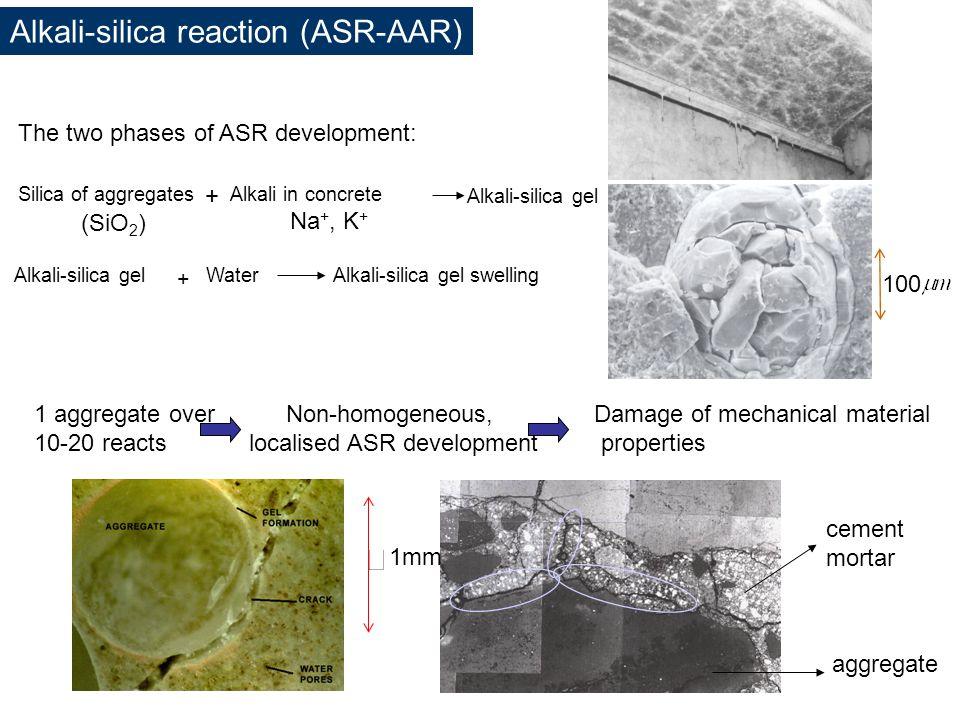 localised ASR development