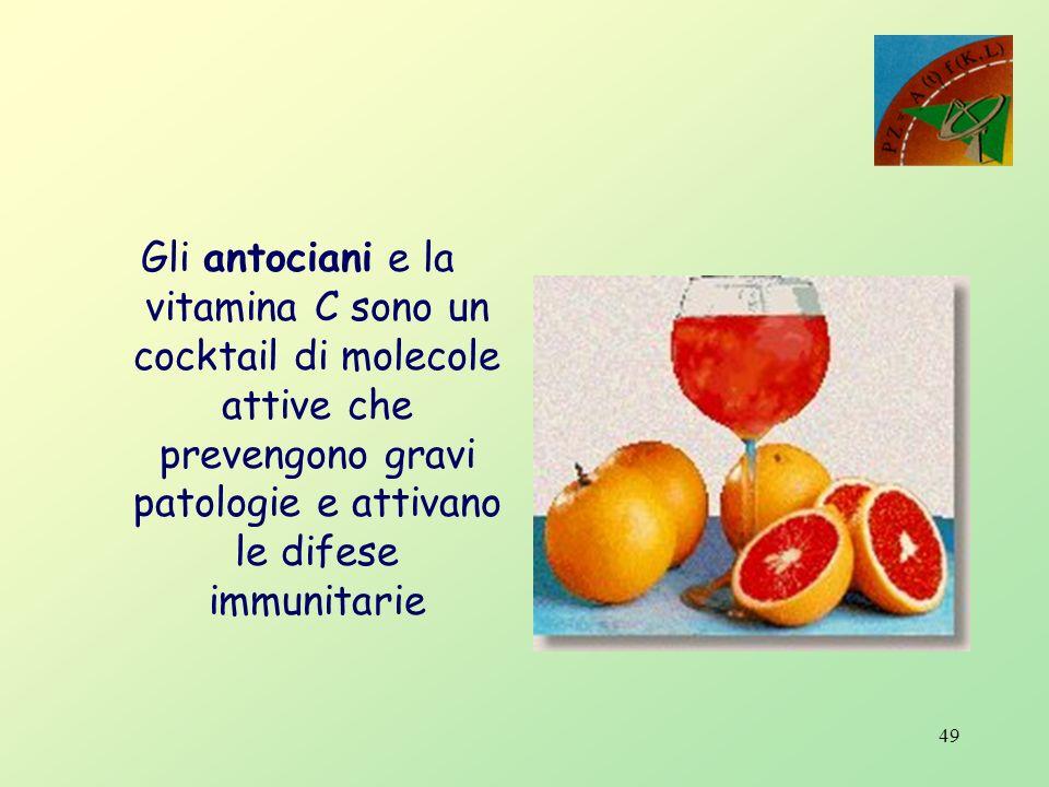 Gli antociani e la vitamina C sono un cocktail di molecole attive che prevengono gravi patologie e attivano le difese immunitarie