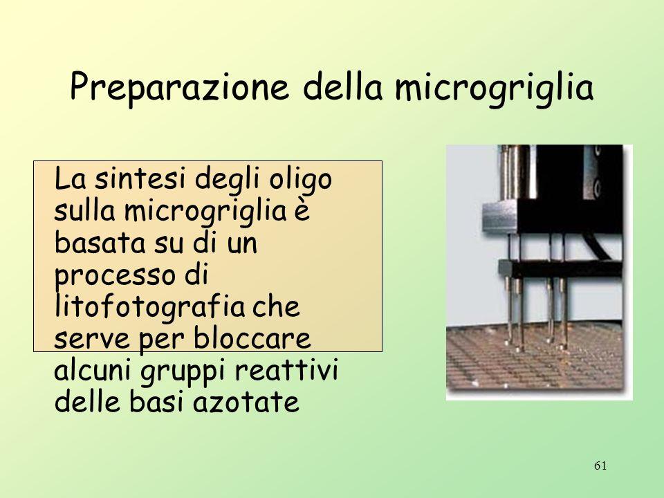 Preparazione della microgriglia